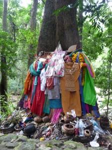 A dressed tree at Na Muang waterfall 1