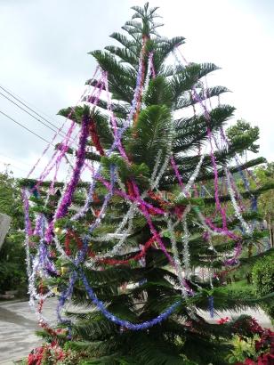 Samui style Christmas tree
