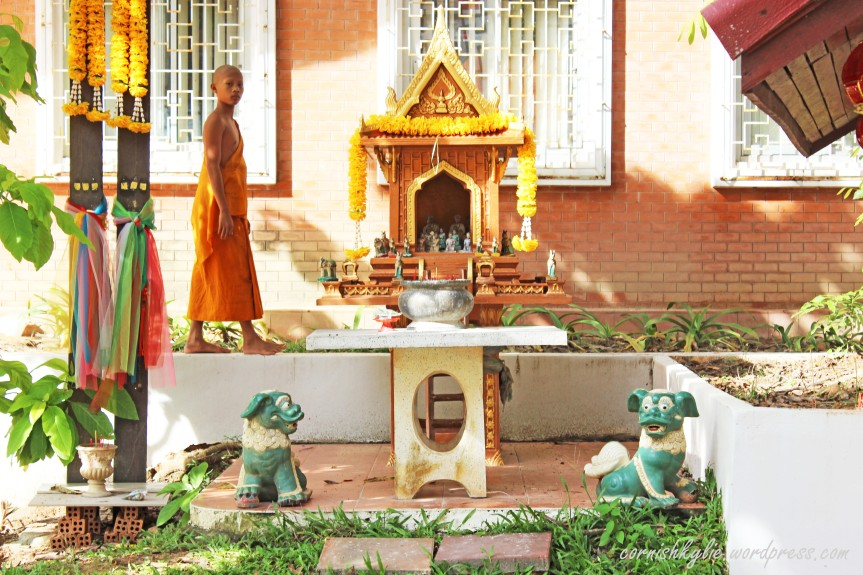Photo of the day: Young monk at the temple