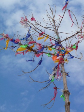 Koh Lipe, wishing tree