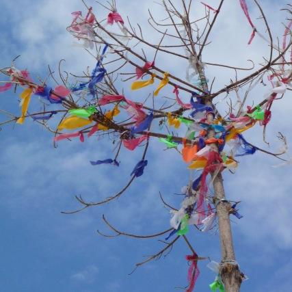 Koh Lipe, wishing tree