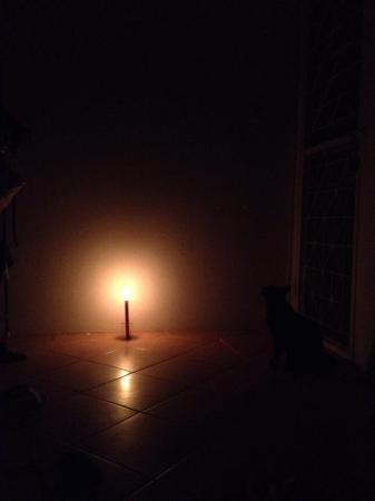 Cat by candlelight.  Romantic.  Sweaty.