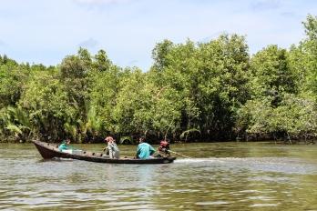 Put-putting along among the mangroves
