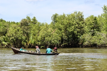 Put-putting along among the mangroves
